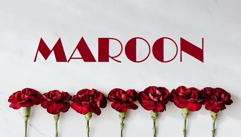 Meaning of colour Maroon